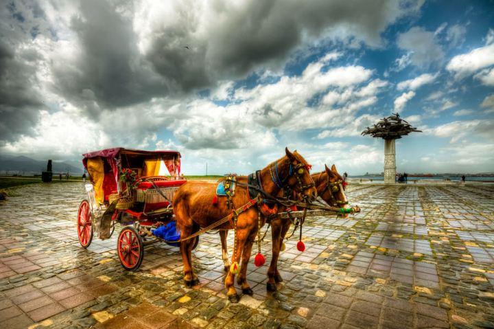 tiempos-de-lluvia-junio-caballos-carreta-efecto-hdr