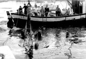 Ascari Mónaco 1955