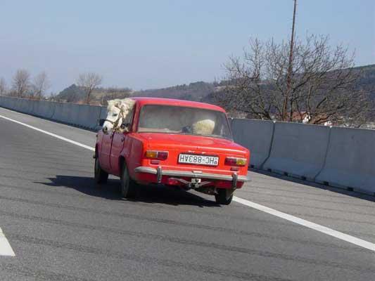 coche_rojo_y_caballo